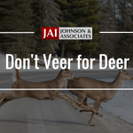 blog cover | dont veer for deer| two doe's running across the road